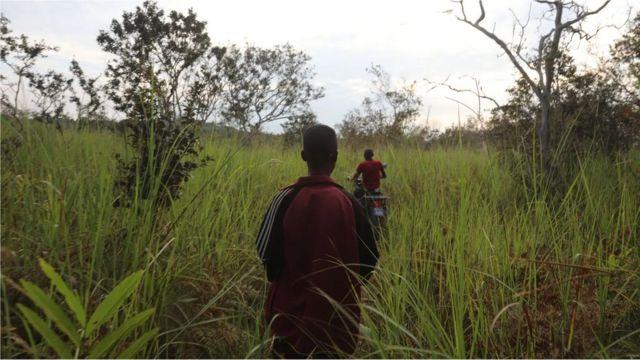 Malgré les difficultés administratives liées aux concessions communautaires, elles ont été largement saluées comme un outil efficace pour le développement durable des forêts