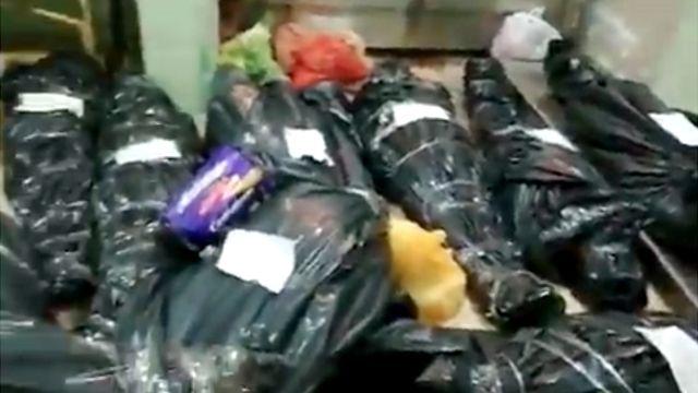 Cuerpos envueltos en bolsas plásticas