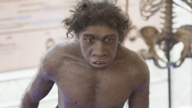 Simulação do Homo erectus