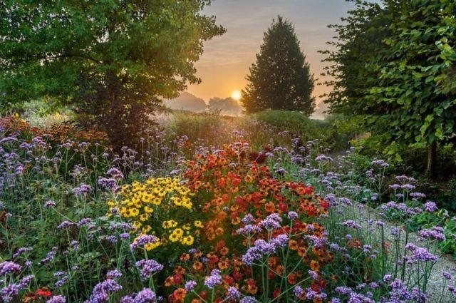شروق الشمس في حديقة