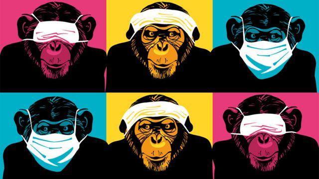 Ilustração com chimpanzés usando máscara