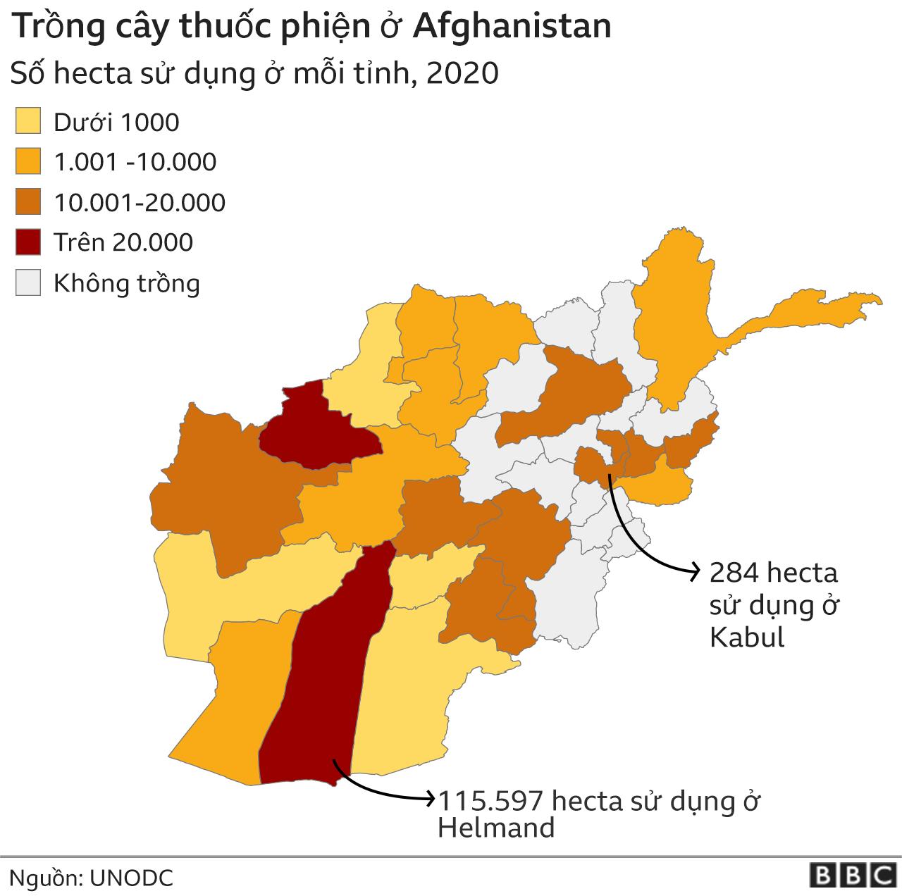 Afghanistan opium map