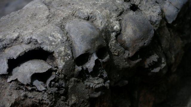 Los cráneos hallados en la excavación.