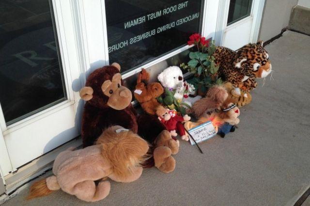 Animales de peluche frente a la clínica de Walter James Palmer