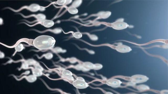 महिला, पुरुष, प्रजोत्पादन, गरोदर, गर्भनिरोध