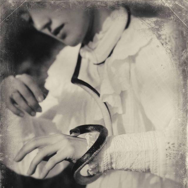 Evatima Tardo, interpretada pela artista de dança Dorna Ashory. Foto: Camilla Greenwell