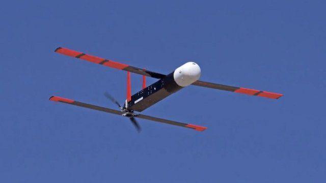 Locust drone