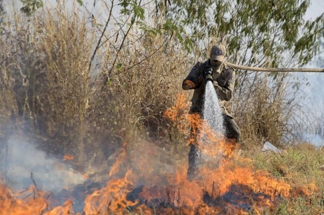 Incendio no Pantanal