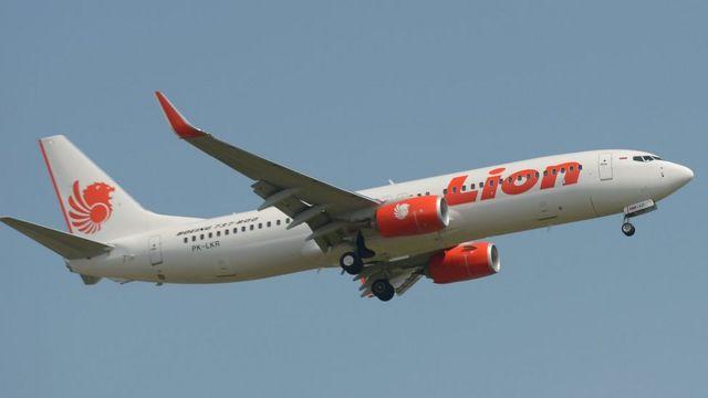 طائرة تابعة لشركة لايون آير