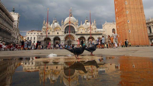 Pombos na Praça San Marco, em Veneza