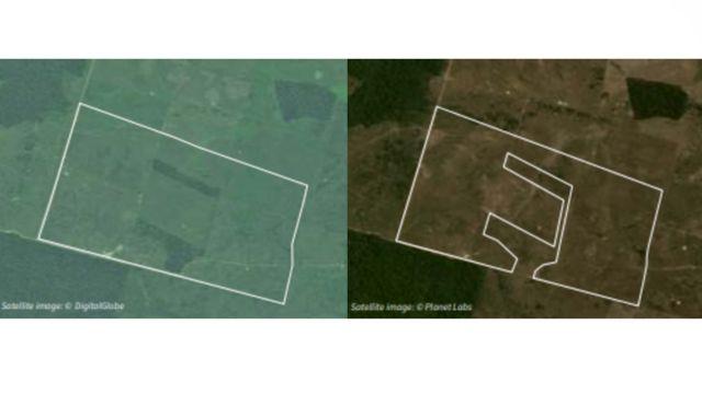 Fazenda em São Félix do Xingu, no Pará, acusada de desmate ilegal