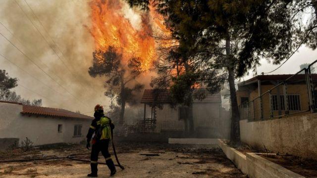 ギリシャのアテネ郊外で森林火災が起こり、数十人の死亡が確認された
