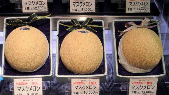 بطيخ أصفر باهظ الثمن في سوق بطوكيو