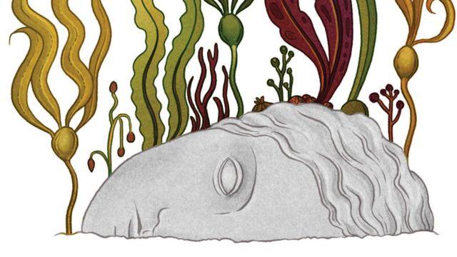 Ilustración de Katie Scott