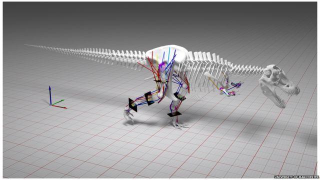 Modelo del T-Rex