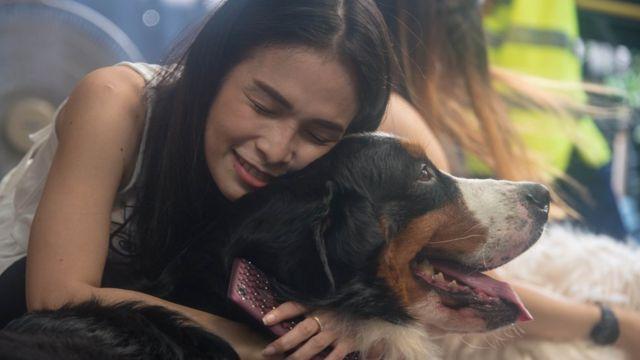 ลูกค้าเล่นกับสุนัขพันธุ์ใหญ่อย่างใกล้ชิด สุนัขทุกตัวได้รับการฝึกให้เชื่องและปลอดภัย