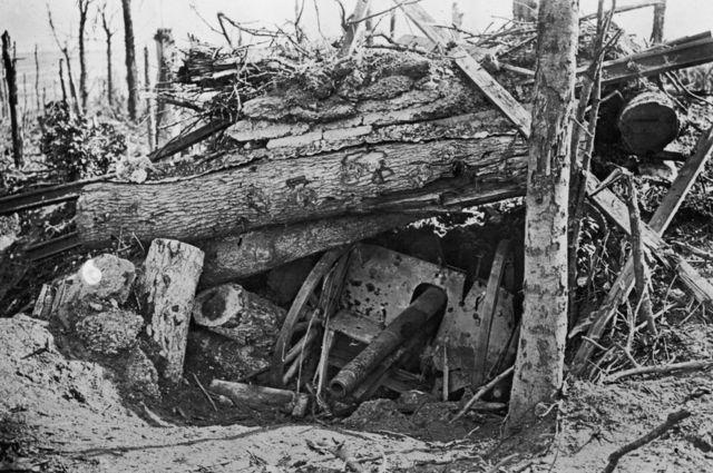 Un cañón alemán enterrado bajo arboles arrancados en Louage Wood durante la ofensiva en el Somme, Primera Guerra Mundial, 10 de octubre 1916.