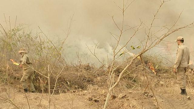 Bombeiros atuam em combate a foco de incêndio no Pantanal