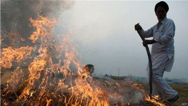 खेत में आग लगाता हुआ किसान