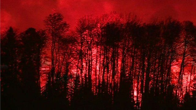 Trees ablaze in Canada