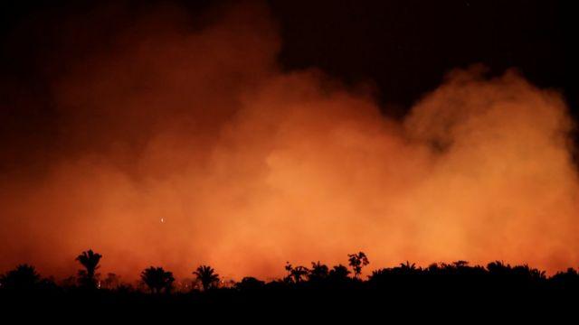 Incendios en el Amazonas: cómo la selva amazónica se volvió más inflamable  pese a ser uno de los lugares más húmedos del mundo - BBC News Mundo