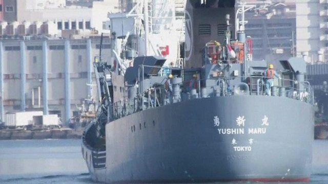 Japanese whaling ship