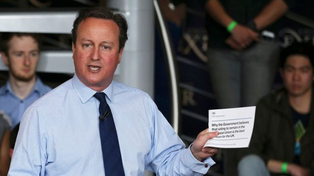 David Cameron and the government's EU leaflet