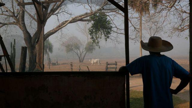 Silhueta de sertanejo com chapeu observando um boi na fazenda; o ar está cheio de fumaça de incêndio