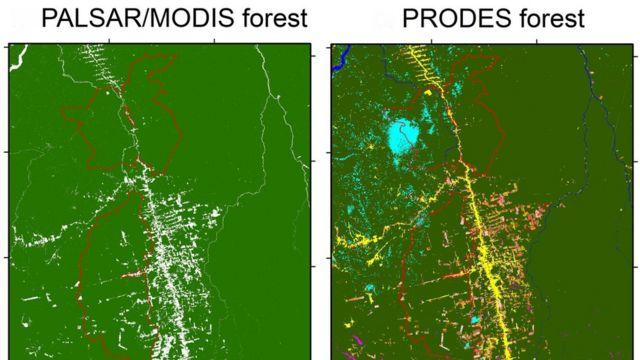 Recorte feitos pelos pesquisadores comparando imagens do método da pesquisa (PALSAR/MODIS) com o PRODES