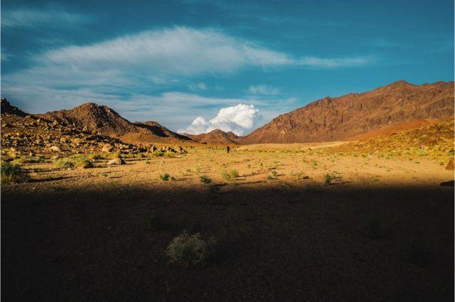 Sinajska trasa