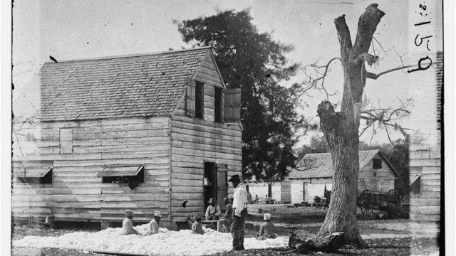 Escravos trabalhando com algodão em fazenda na Carolina do Sul, em 1862