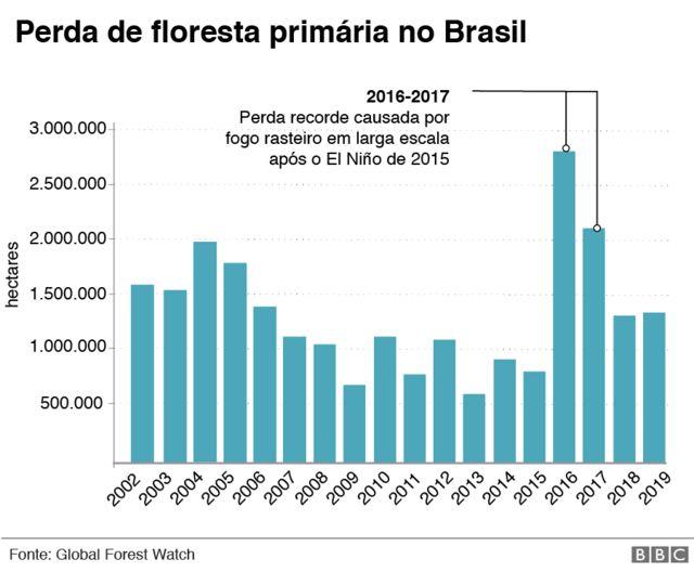 gráfico de perda de floresta primária no Brasil