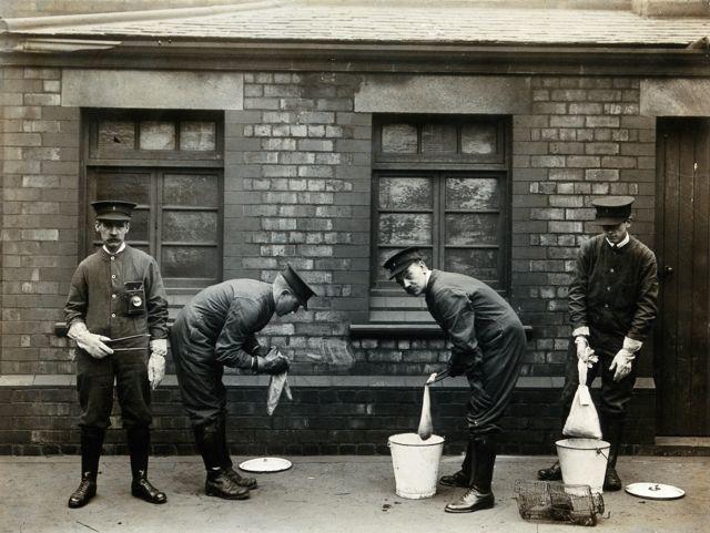 Funcionaros de la autoridad portuaria de Liverpool zambullendo ratas en cubos de gasolina