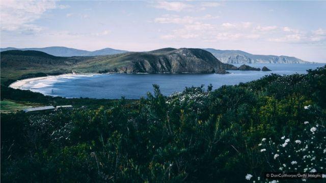 布朗尼岛的原始生态是闪光的海湾和沙滩的家园。