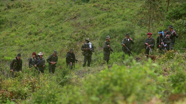 Miembros de las FARC en la selva de Colombia.