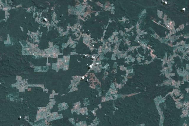 Desmatamento na bacia do Xingu