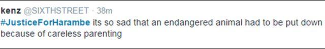 「kenz」さんは、「不注意な親のせいで絶滅危惧種の動物が殺されなくてはいけなかったのはとても悲しい」とツイート。