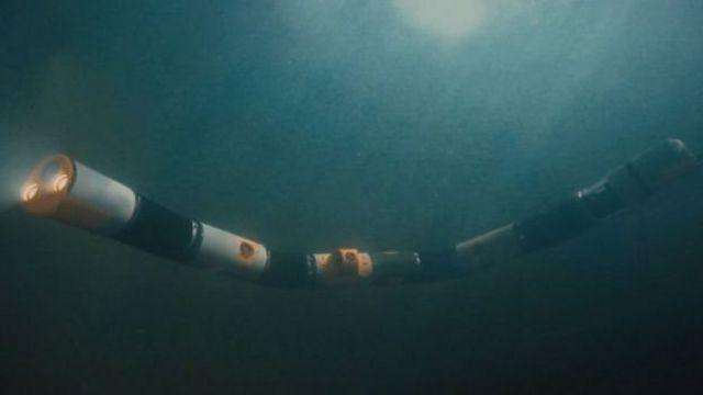 หุ่นยนต์งูทะเล