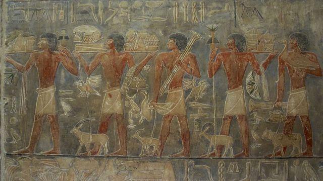 نقوش مصرية قديمة لخيرات زراعية ومجموعة من العمال