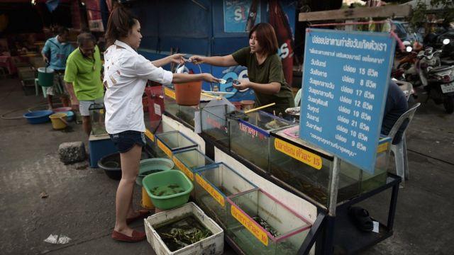 คนกำลังซื้อปลาเพื่อปล่อยตามวันเกิด