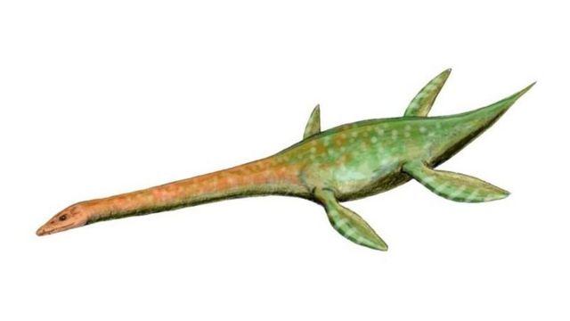 艾登堡恐龙