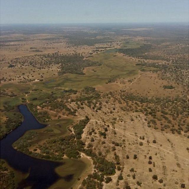 Desmatamento no Pantanal