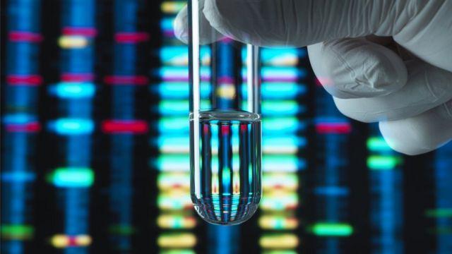 Muestra de ADN y gráficos de secuenciación