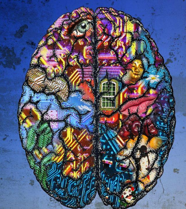 Cérebro desenhado