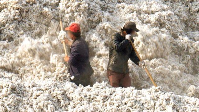 Trabajadores en un campo de algodón de Xinjiang