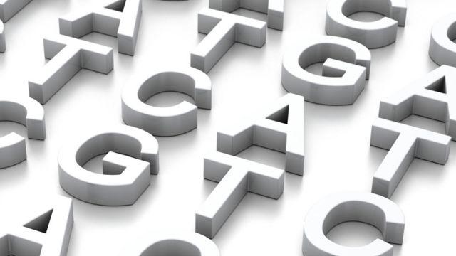 Letras de las bases de ADN