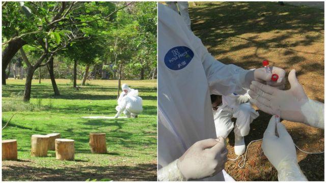 Ação anticarrapato em parque na região da Pampulha