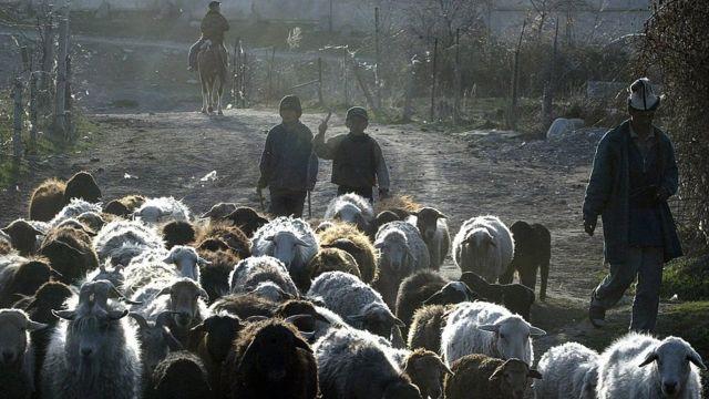 Дети в Кыргызстане