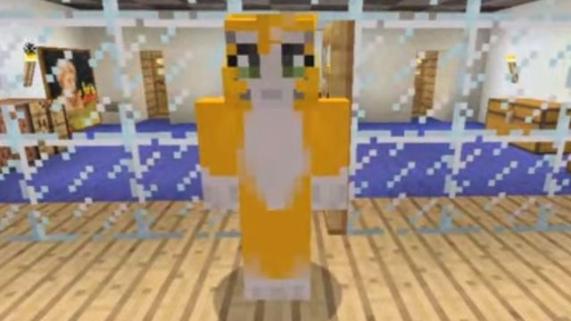 More than six and a half million viewers subscribe to Stampy Cat's YouTube  channel