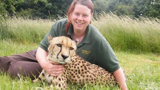 Rosa King inquest: Zookeeper mauled by tiger 'accidentally'